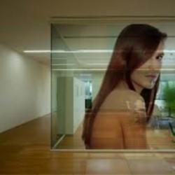 Vinil transparente de interior até 50x100cm